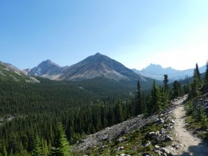 Tonquin Valley Trail - Landschaft