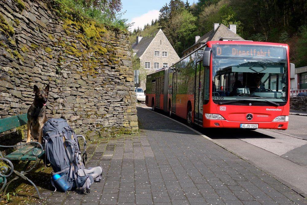 Wanderung Eifel