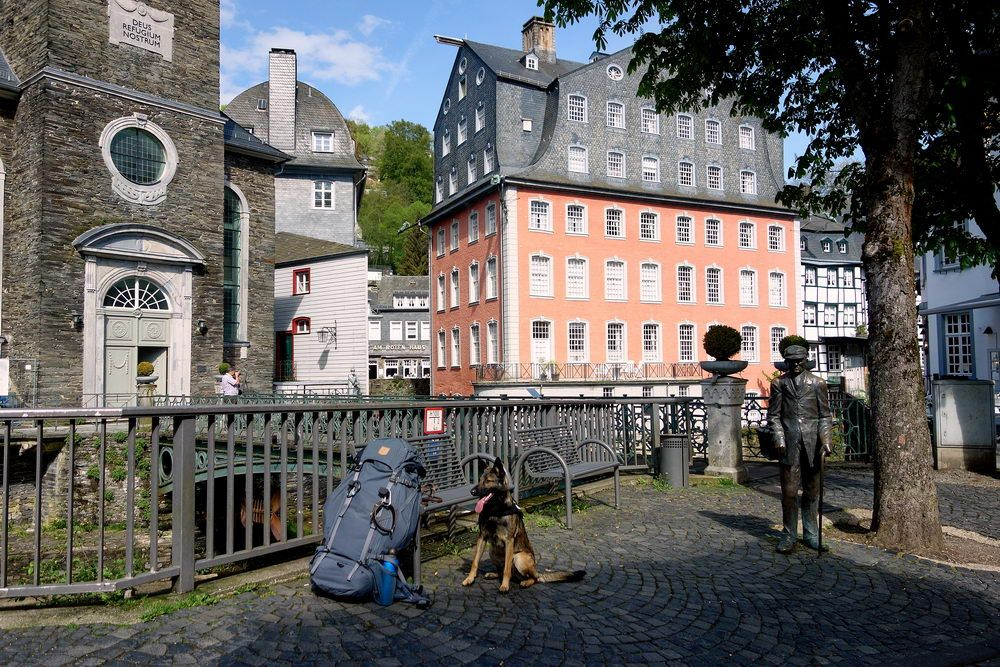 Rucksackwanderung durch Monschau mit Hund