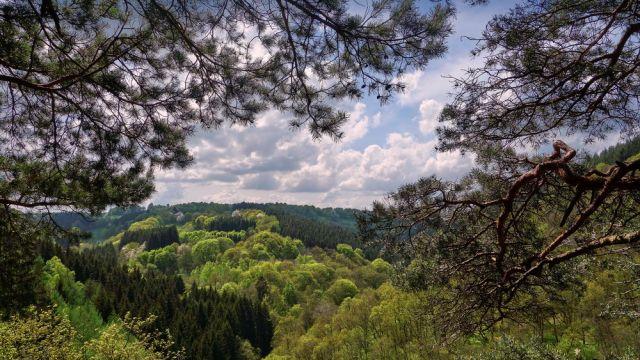 Nationalpark Eifel