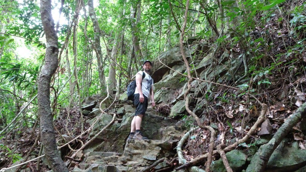 Dschungel beim Hin Lad Wasserfall