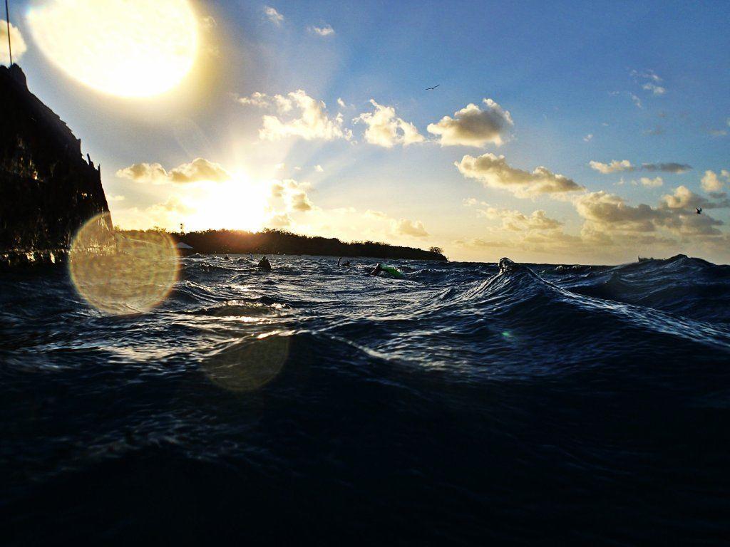 Heron Island - Australien Ostküste Highlights