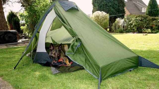 Hundegeeignetes Ultraleichtzelt Trek Escape