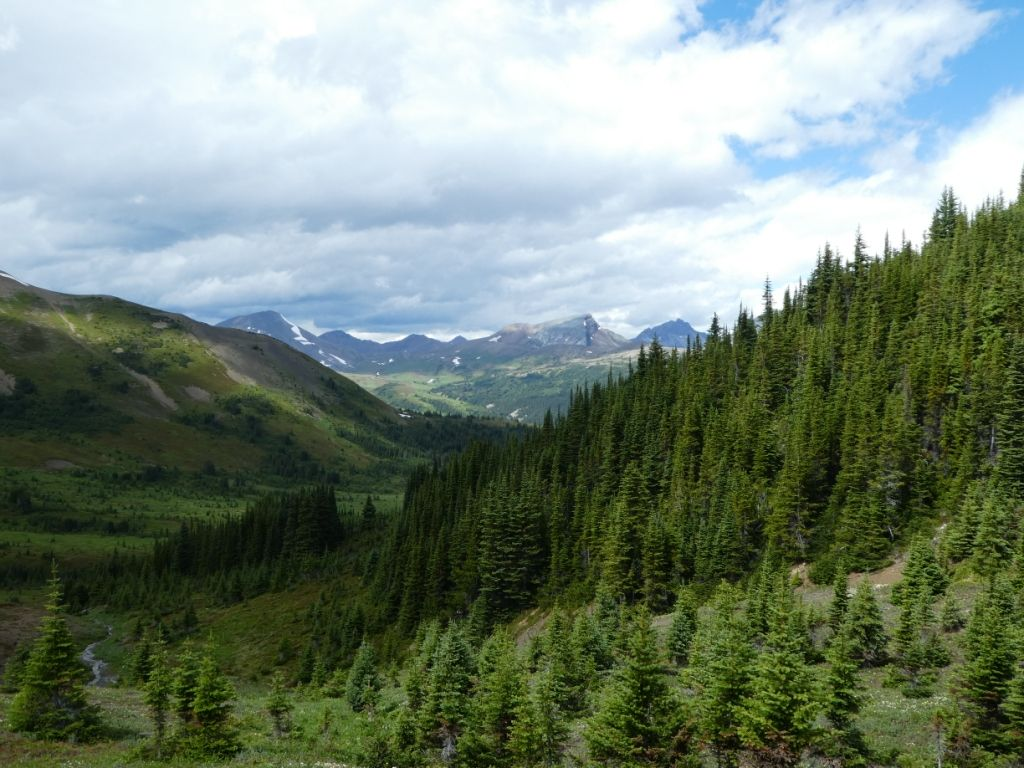 Jasper Nationalpark - Landschaft