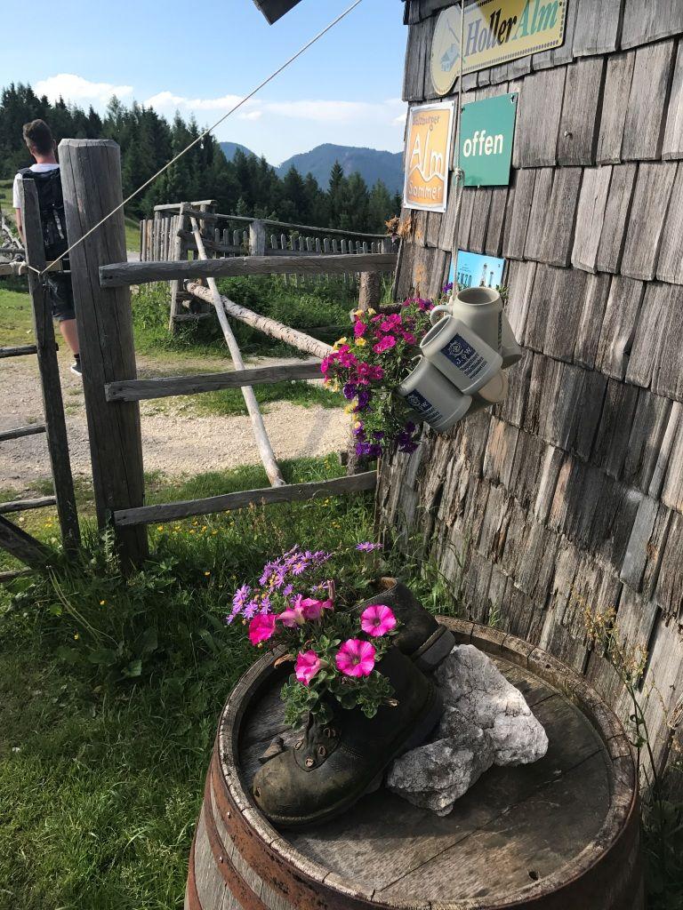 Lärchenhütte im Salzkammergut