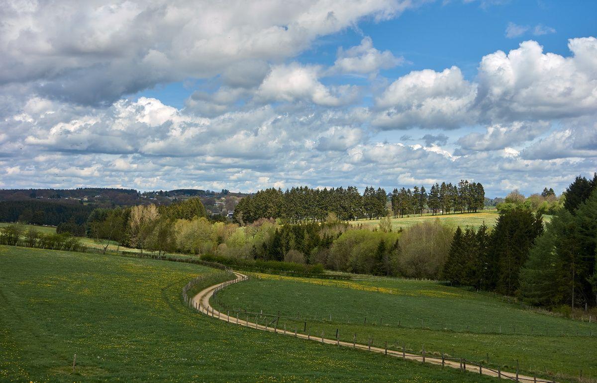 Landschaft am Vennbahnradweg nahe Büllingen / Belgien