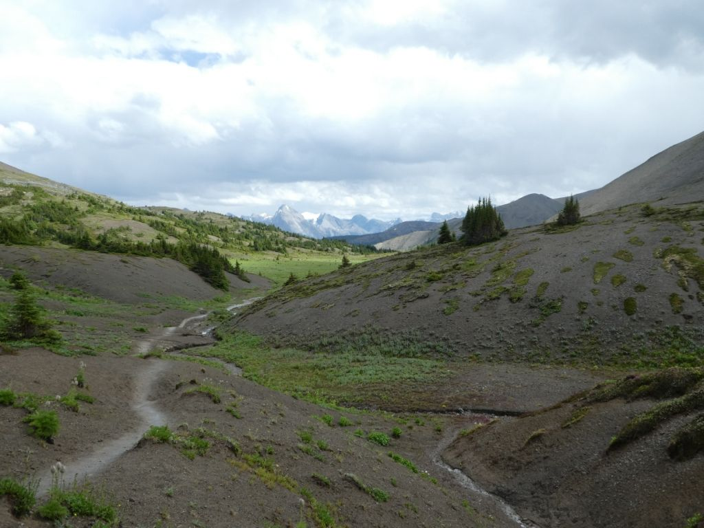 Landschaft im Jasper Nationalpark