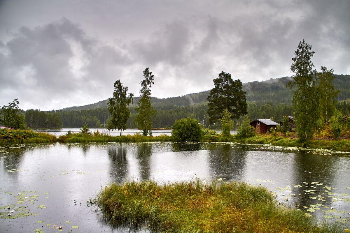 Landschaft im Värmland bei Torsby