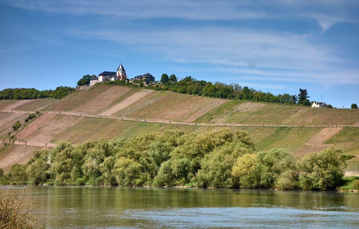 Marienburg bei Pünderich an der Mosel