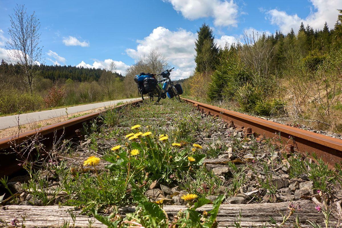 Radweg und altes Gleis am Vennbahnradweg