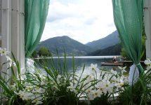 Narzissenwanderng Lunz am See, leichte Wanderung